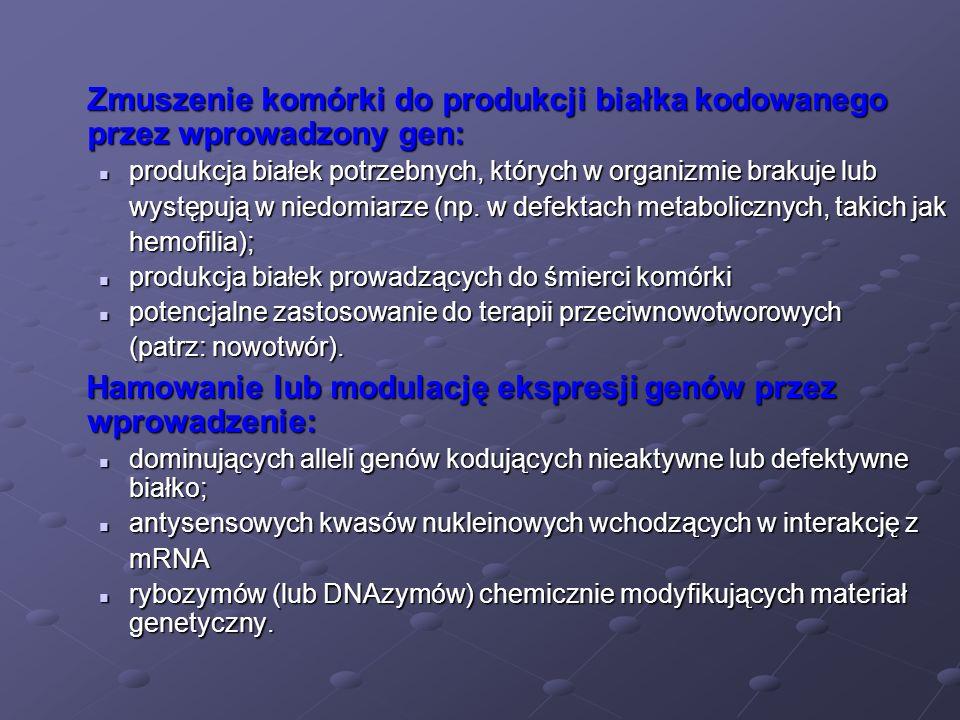 Zmuszenie komórki do produkcji białka kodowanego przez wprowadzony gen: produkcja białek potrzebnych, których w organizmie brakuje lub produkcja białe