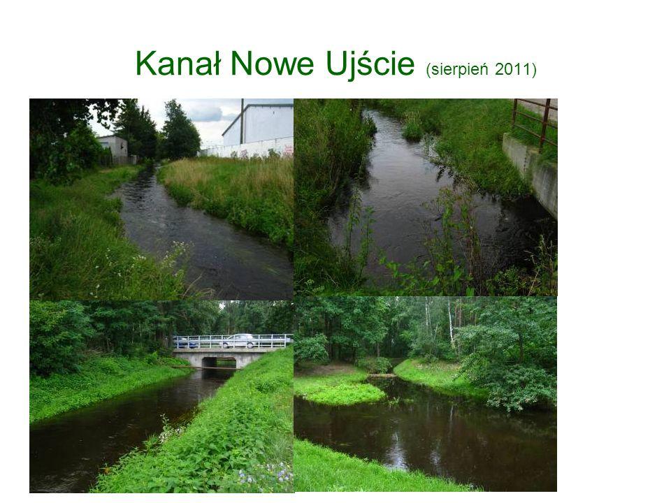 Kanał Nowe Ujście (sierpień 2011)
