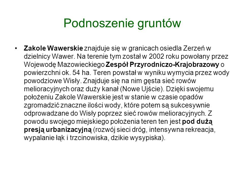 Podnoszenie gruntów Zakole Wawerskie znajduje się w granicach osiedla Zerzeń w dzielnicy Wawer.