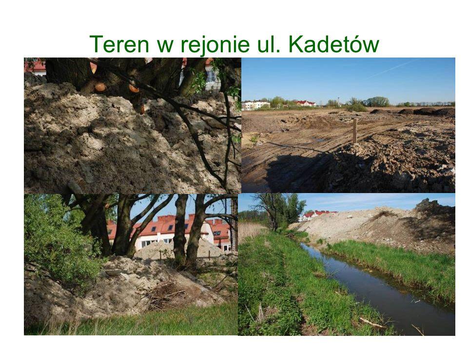 Teren w rejonie ul. Kadetów