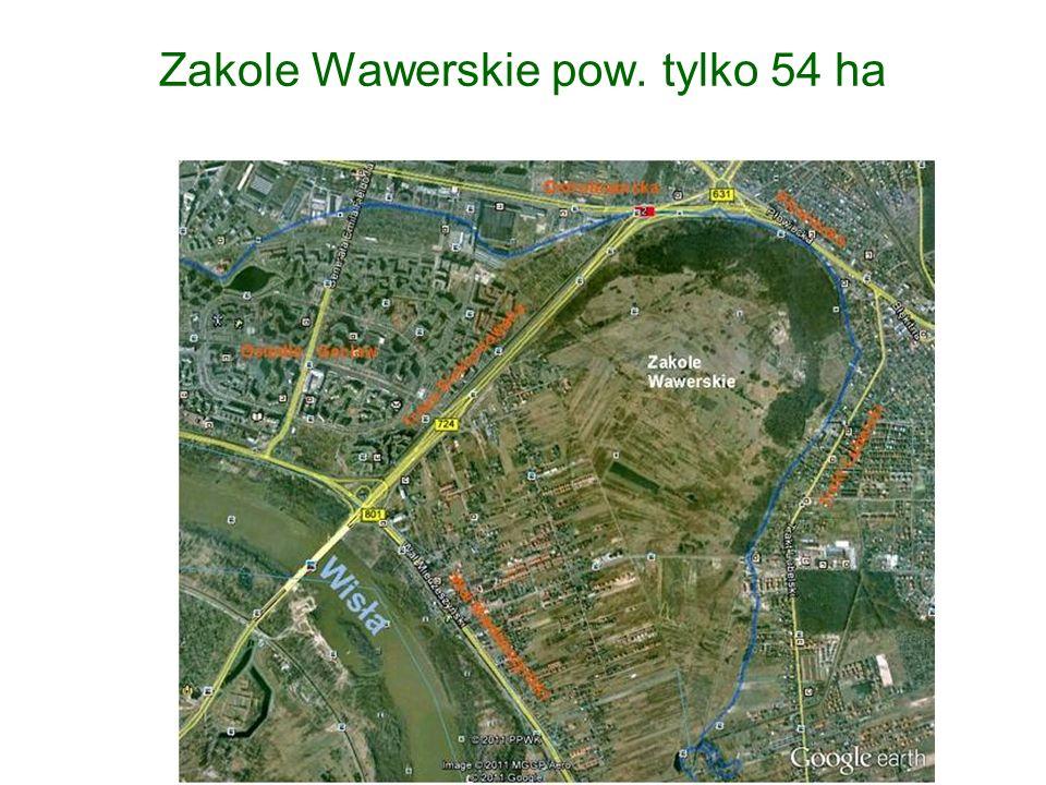Zakole Wawerskie pow. tylko 54 ha