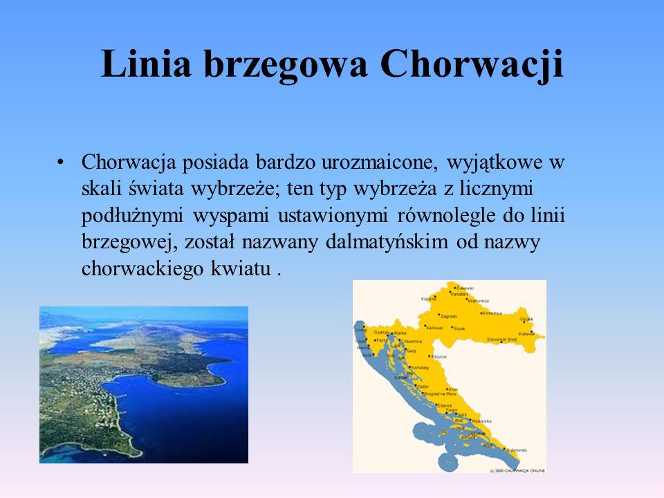 Linia brzegowa Chorwacji Chorwacja posiada bardzo urozmaicone, wyjątkowe w skali świata wybrzeże; ten typ wybrzeża z licznymi podłużnymi wyspami ustawionymi równolegle do linii brzegowej, został nazwany dalmatyńskim od nazwy chorwackiego kwiatu.