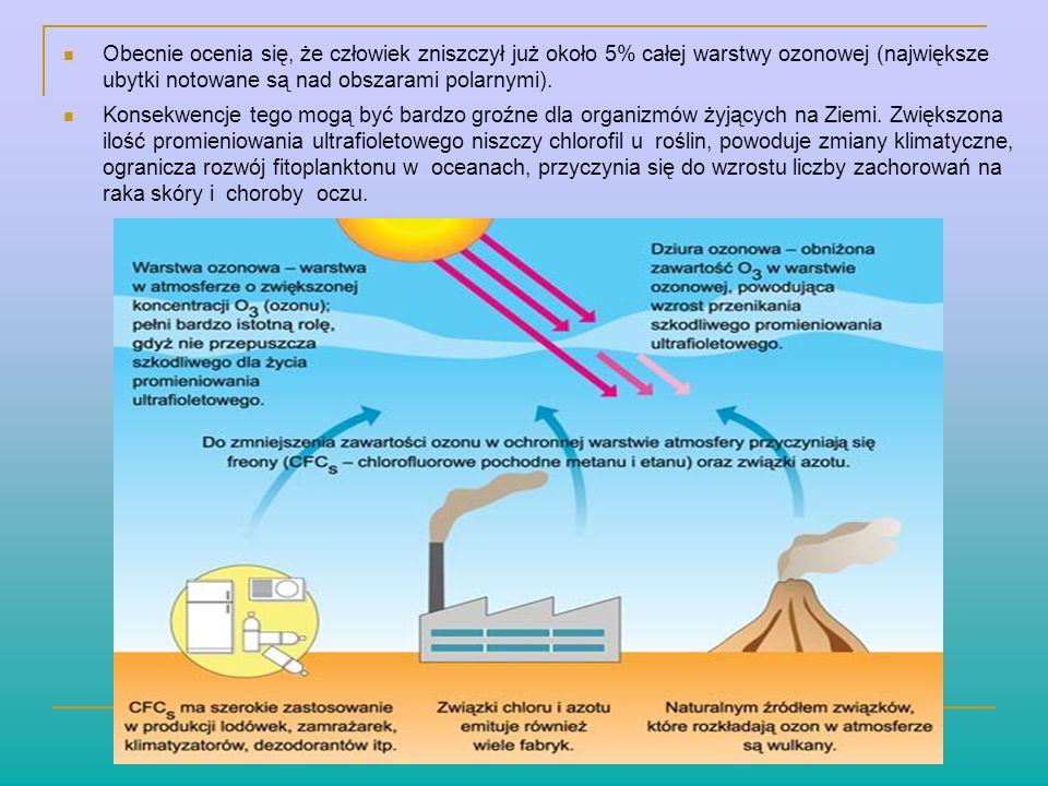 Obecnie ocenia się, że człowiek zniszczył już około 5% całej warstwy ozonowej (największe ubytki notowane są nad obszarami polarnymi). Konsekwencje te