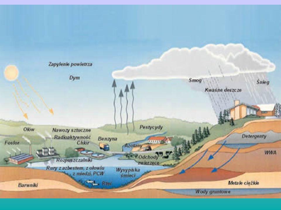 Zanieczyszczenia naturalne Erupcja wulkanów Erozja wietrzna skał Drobinki soli z rozbryzgów wody morskiej Pożary lasów Pył kosmiczny Pyłki roślin