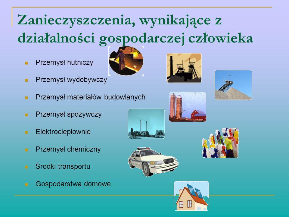 Zanieczyszczenia, wynikające z działalności gospodarczej człowieka Przemysł hutniczy Przemysł wydobywczy Przemysł materiałów budowlanych Przemysł spoż
