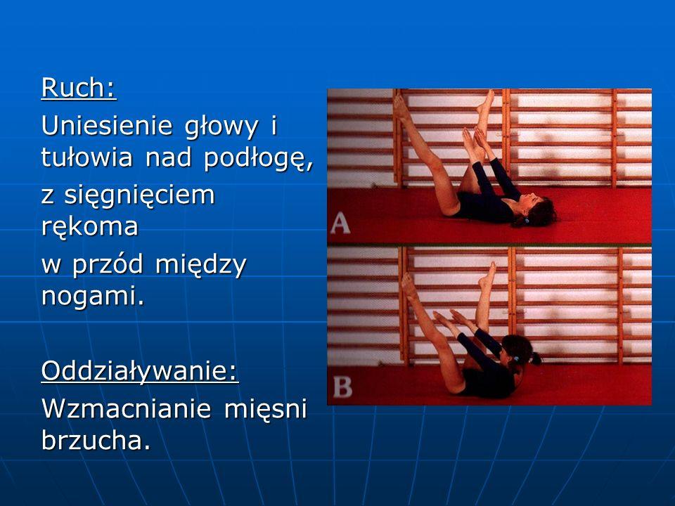 Ruch: Uniesienie głowy i tułowia nad podłogę, z sięgnięciem rękoma w przód między nogami.