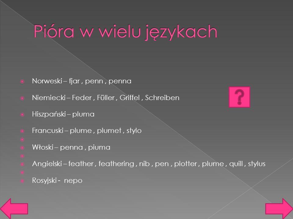  Norweski – fjar, penn, penna  Niemiecki – Feder, Füller, Griffel, Schreiben  Hiszpański – pluma  Francuski – plume, plumet, stylo   Włoski – penna, piuma   Angielski – feather, feathering, nib, pen, plotter, plume, quill, stylus   Rosyjski - nepo