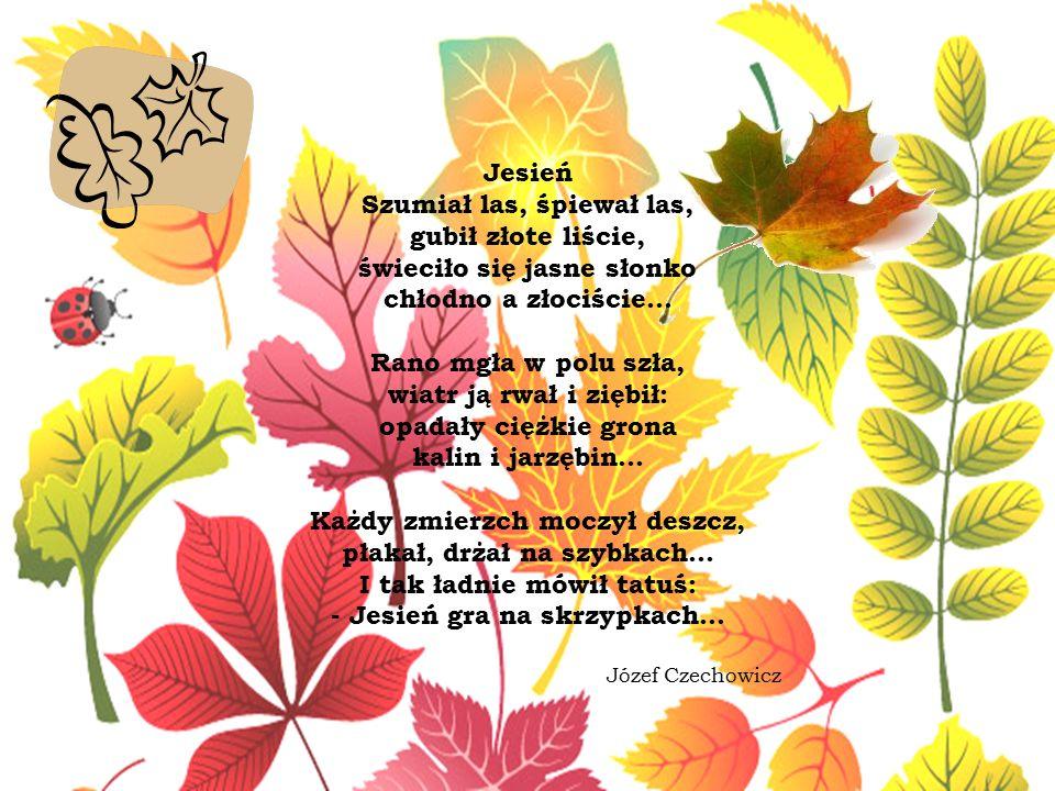 Jesień Szumiał las, śpiewał las, gubił złote liście, świeciło się jasne słonko chłodno a złociście...