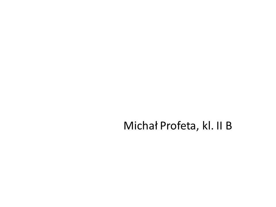 Michał Profeta, kl. II B