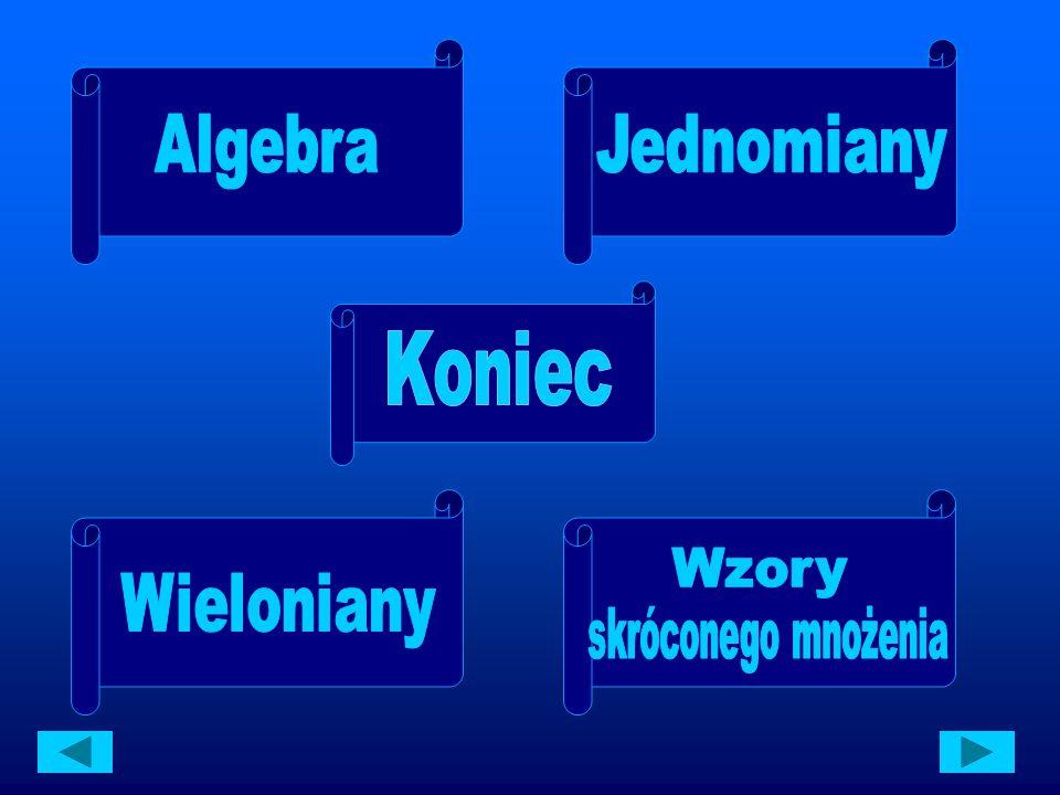 Literowe oznaczenia dla wielkości niewiadomych stosował już starożytny myśliciel Diofantos.