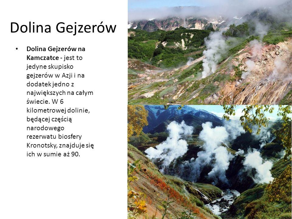 Dolina Gejzerów Dolina Gejzerów na Kamczatce - jest to jedyne skupisko gejzerów w Azji i na dodatek jedno z największych na całym świecie.