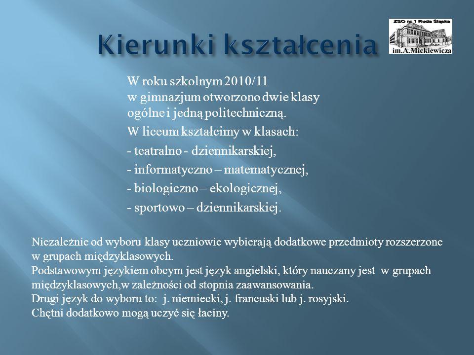 W roku szkolnym 2010/11 w gimnazjum otworzono dwie klasy ogólne i jedną politechniczną.