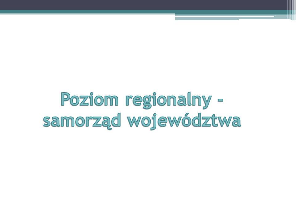 Strategia rozwoju województwa jest realizowana przez programy rozwoju, regionalny program operacyjny, program służący realizacji umowy partnerstwa i kontrakt terytorialny, o których mowa w ustawie z dnia 6 grudnia 2006 r.