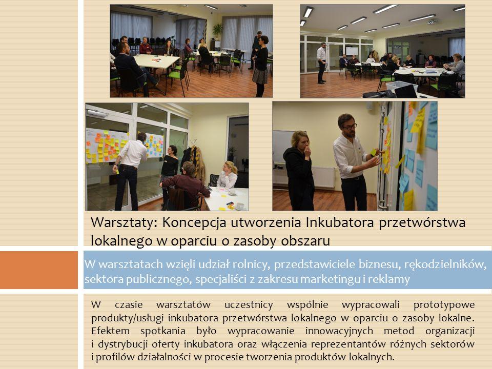 W czasie warsztatów uczestnicy wspólnie wypracowali prototypowe produkty/usługi inkubatora przetwórstwa lokalnego w oparciu o zasoby lokalne. Efektem