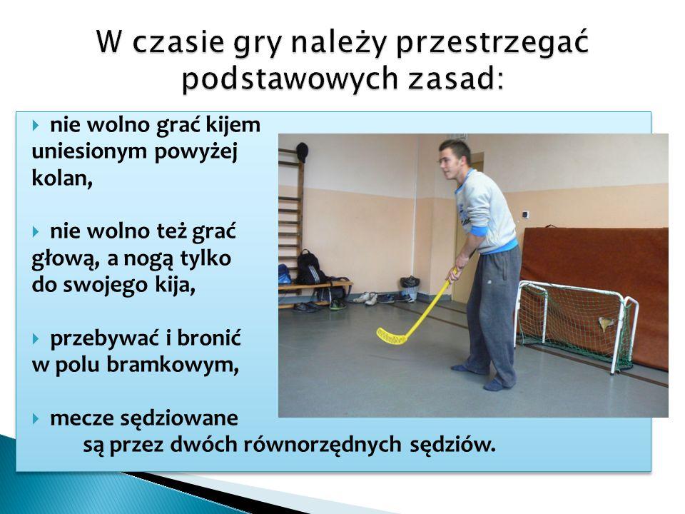 Szkolne rozgrywki unihokeja dla chłopców!!.W dniach 16-27 stycznia 2012r.