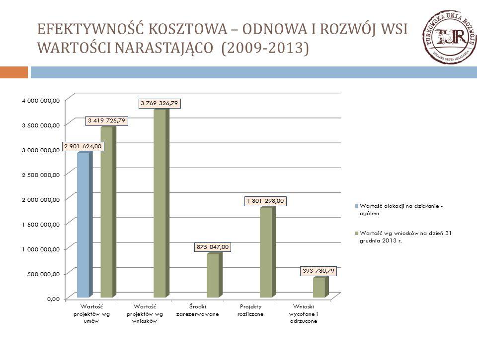 EFEKTYWNOŚĆ KOSZTOWA – ODNOWA I ROZWÓJ WSI WARTOŚCI NARASTAJĄCO (2009-2013)