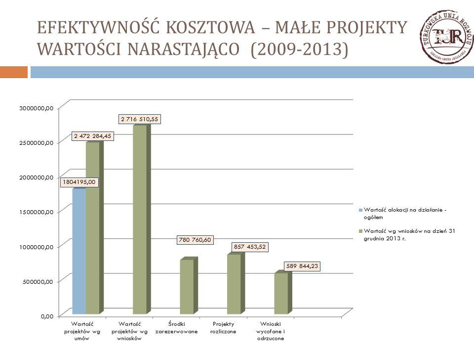 EFEKTYWNOŚĆ KOSZTOWA – MAŁE PROJEKTY WARTOŚCI NARASTAJĄCO (2009-2013)