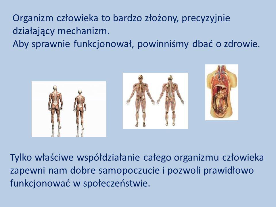 Organizm człowieka to bardzo złożony, precyzyjnie działający mechanizm.