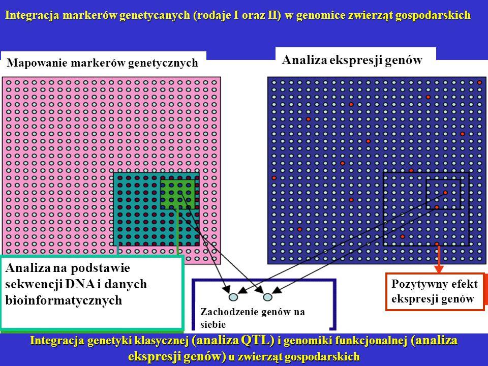 Integracja genetyki klasycznej (analiza QTL) i genomiki funkcjonalnej (analiza ekspresji genów) u zwierząt gospodarskich Analiza na podstawie sekwencj