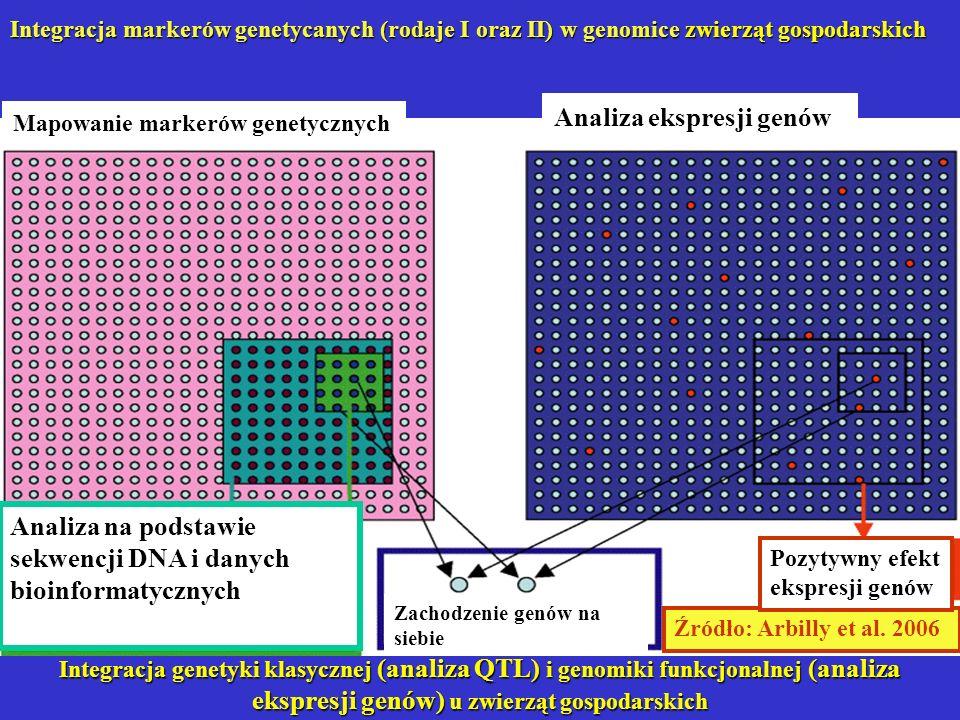 Integracja genetyki klasycznej (analiza QTL) i genomiki funkcjonalnej (analiza ekspresji genów) u zwierząt gospodarskich Źródło: Arbilly et al. 2006 A