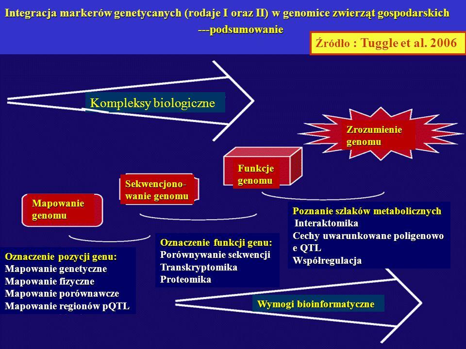 Źródło : Tuggle et al. 2006 Mapowanie genomu Sekwencjono- wanie genomu Funkcje genomu Zrozumienie genomu Kompleksy biologiczne Wymogi bioinformatyczne