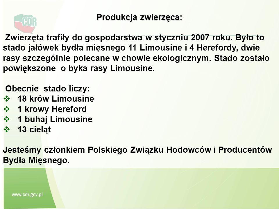 Produkcja zwierzęca: Zwierzęta trafiły do gospodarstwa w styczniu 2007 roku. Było to stado jałówek bydła mięsnego 11 Limousine i 4 Herefordy, dwie ras