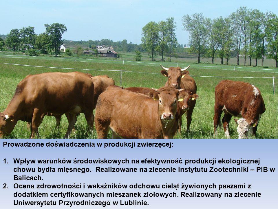 CENTRUM DORADZTWA ROLNICZEGO W BRWINOWIE ODDZIAŁ W RADOMIU 19 Prowadzone doświadczenia w produkcji zwierzęcej: 1.Wpływ warunków środowiskowych na efektywność produkcji ekologicznej chowu bydła mięsnego.