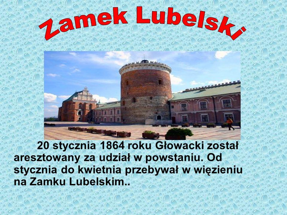 20 stycznia 1864 roku Głowacki został aresztowany za udział w powstaniu. Od stycznia do kwietnia przebywał w więzieniu na Zamku Lubelskim..