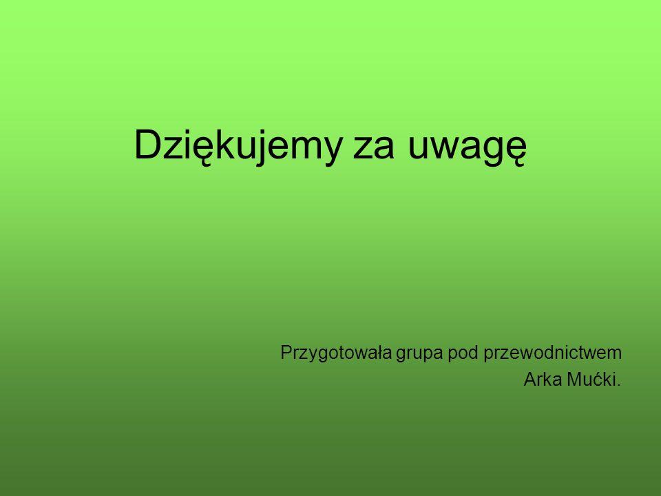 Dziękujemy za uwagę Przygotowała grupa pod przewodnictwem Arka Mućki.