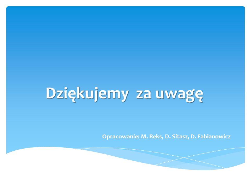 Dziękujemy za uwagę Opracowanie: M. Reks, D. Sitasz, D. Fabianowicz