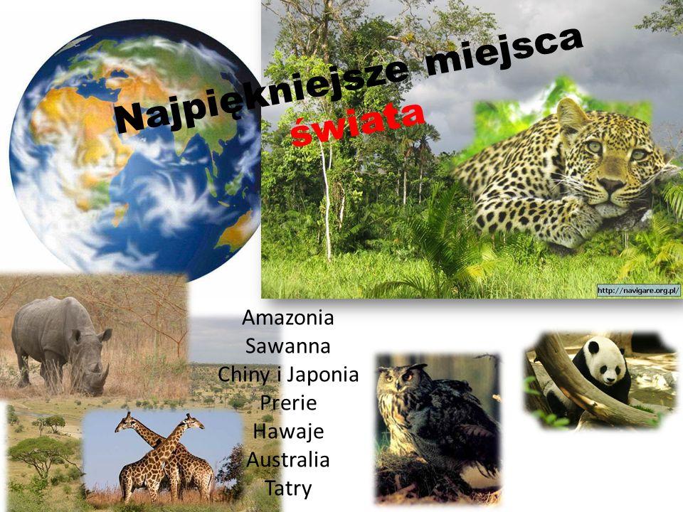 N a j p i ę k n i e j s z e m i e j s c a ś w i a t a Amazonia Sawanna Chiny i Japonia Prerie Hawaje Australia Tatry