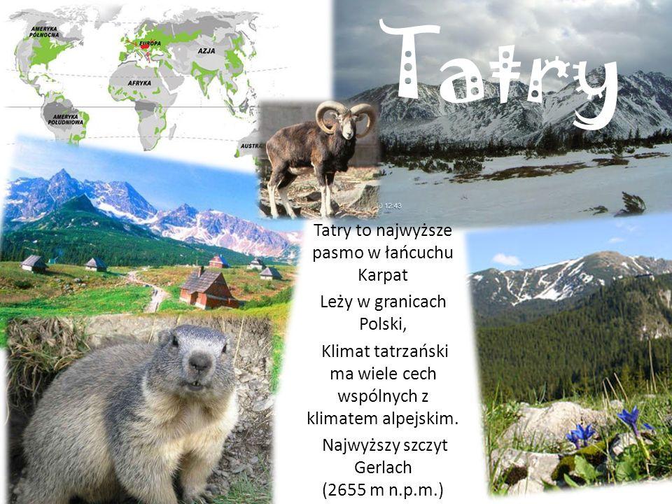 Tatry Tatry to najwyższe pasmo w łańcuchu Karpat Leży w granicach Polski, Klimat tatrzański ma wiele cech wspólnych z klimatem alpejskim.