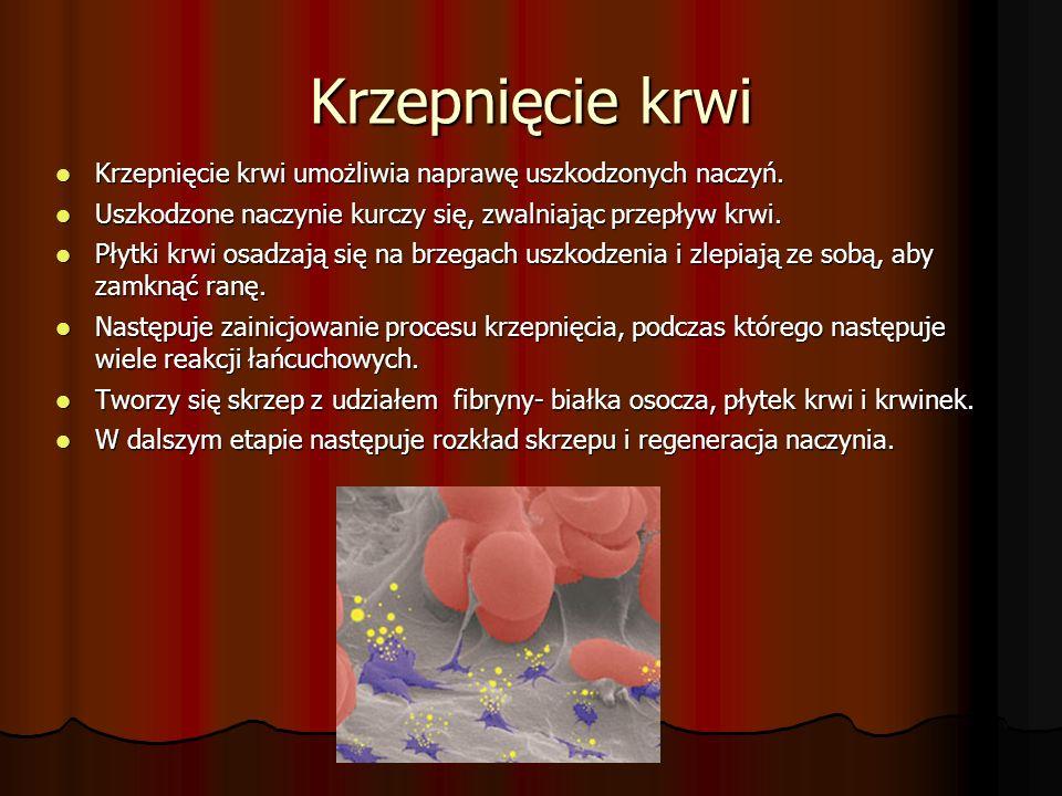 Krzepnięcie krwi Krzepnięcie krwi umożliwia naprawę uszkodzonych naczyń.