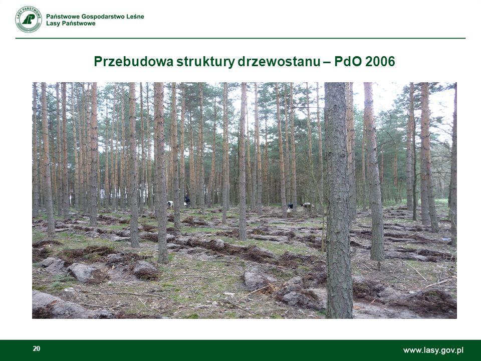 20 Przebudowa struktury drzewostanu – PdO 2006