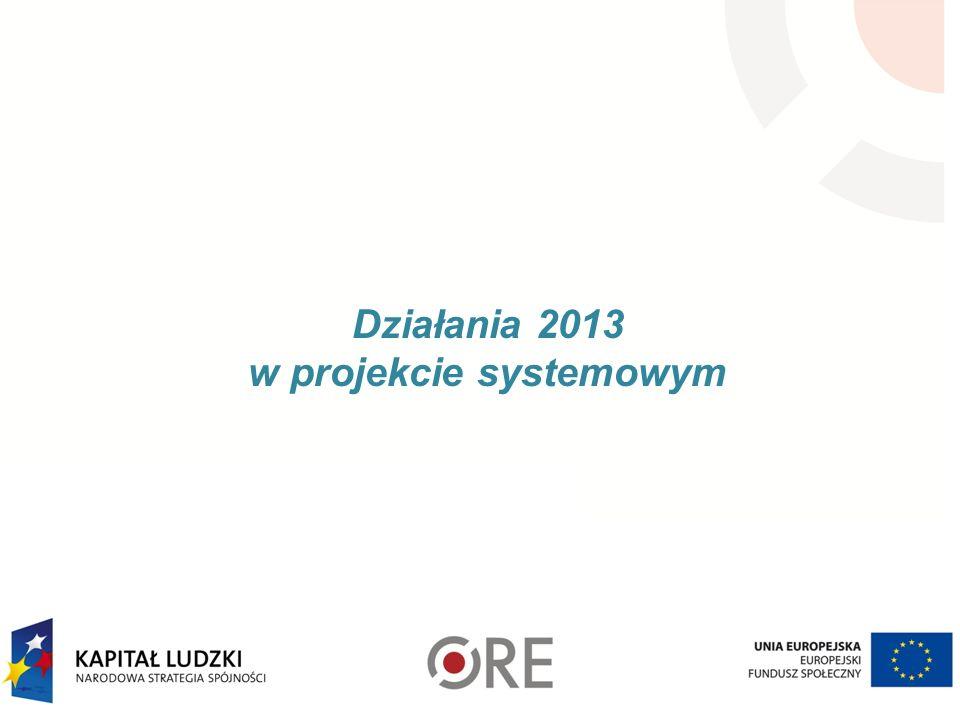 Działania 2013 w projekcie systemowym