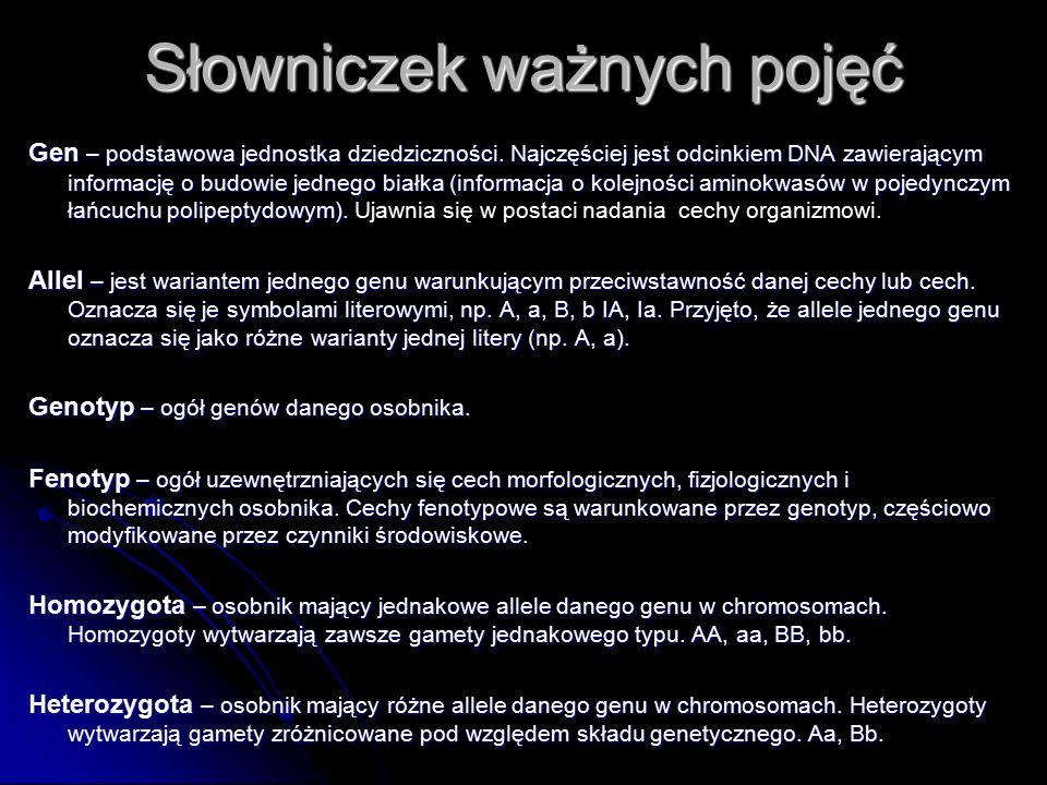 Źródła W.Lewiński,J.Prokop, Biologia 2, Operon, Gdynia, 2004 W.Lewiński,J.Prokop, Biologia 2, Operon, Gdynia, 2004 J.Loritz-Dobrowolska i wsp., Biologia, Operon, Gdynia, 2007 J.Loritz-Dobrowolska i wsp., Biologia, Operon, Gdynia, 2007 B.Sągin, MSęktas, Puls życia, Nowa Era, 2008 B.Sągin, MSęktas, Puls życia, Nowa Era, 2008 B.Klimuszko, Biologia III, Żak, Warszawa 2001 B.Klimuszko, Biologia III, Żak, Warszawa 2001 E.Kłos i wsp., Ciekawa biologia, WSiP, Warszawa, 2002 E.Kłos i wsp., Ciekawa biologia, WSiP, Warszawa, 2002 E.Wierbiłowicz, Biologia, ABC, Poznań, 2001 E.Wierbiłowicz, Biologia, ABC, Poznań, 2001 B.Potocka, W.Górski, Biologia 2, MAC Edukacja,2003 B.Potocka, W.Górski, Biologia 2, MAC Edukacja,2003