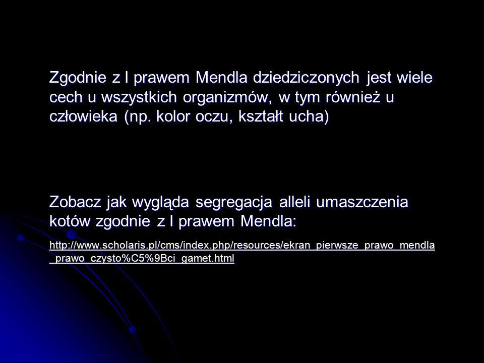 Zgodnie z I prawem Mendla dziedziczonych jest wiele cech u wszystkich organizmów, w tym również u człowieka (np.