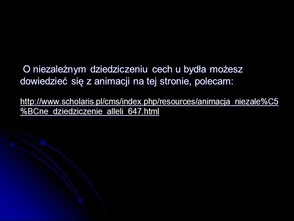 O niezależnym dziedziczeniu cech u bydła możesz dowiedzieć się z animacji na tej stronie, polecam: O niezależnym dziedziczeniu cech u bydła możesz dowiedzieć się z animacji na tej stronie, polecam: http://www.scholaris.pl/cms/index.php/resources/animacja_niezale%C5 %BCne_dziedziczenie_alleli_647.html http://www.scholaris.pl/cms/index.php/resources/animacja_niezale%C5 %BCne_dziedziczenie_alleli_647.html