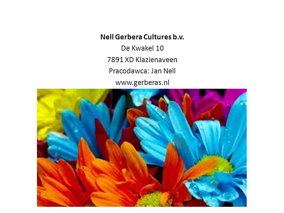 Nell Gerbera Cultures b.v. De Kwakel 10 7891 XD Klazienaveen Pracodawca: Jan Nell www.gerberas.nl