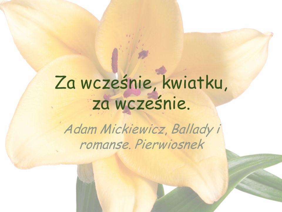 Za wcześnie, kwiatku, za wcześnie. Adam Mickiewicz, Ballady i romanse. Pierwiosnek