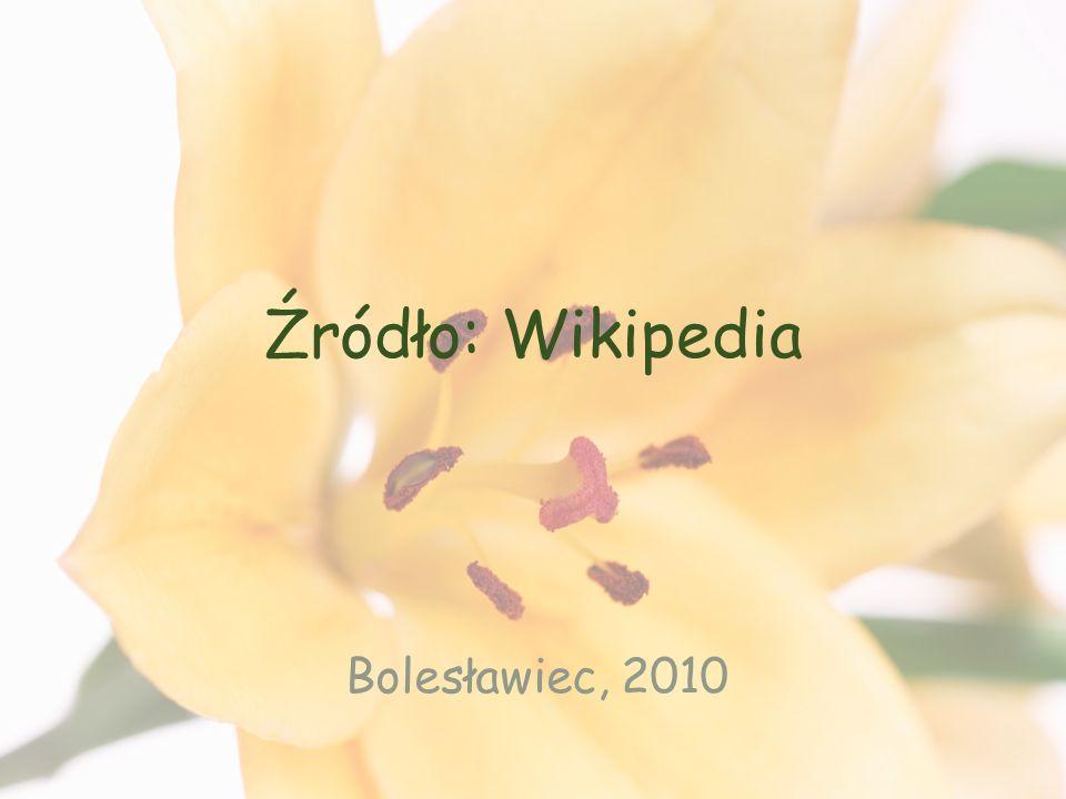 Źródło: Wikipedia Bolesławiec, 2010