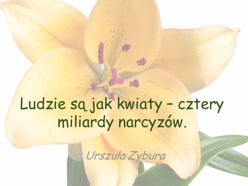Ludzie są jak kwiaty – cztery miliardy narcyzów. Urszula Zybura