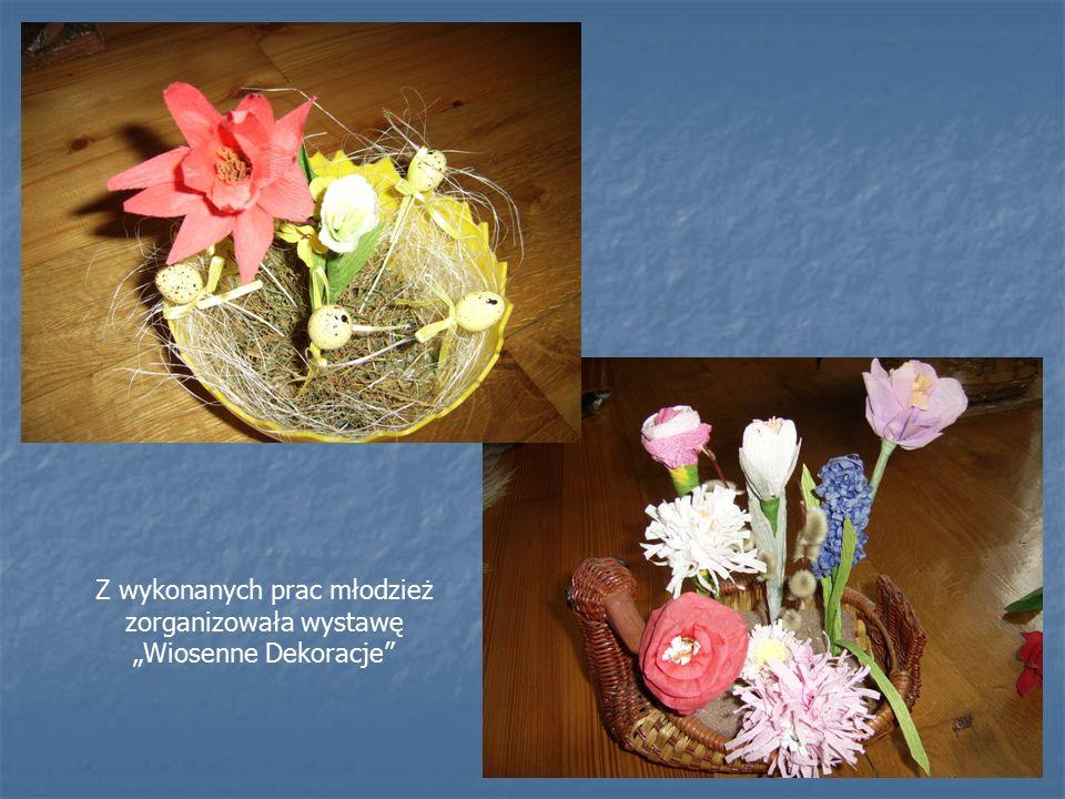 Dnia 13.01, 14.01, 18.01, 19.01 2010r. w Klubie odbyły się zajęcia plastyczne Na zajęciach młodzież uczyła się wykonywać kwiaty z bibuły i krępiny.
