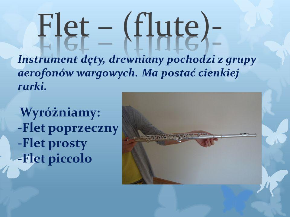 Instrument dęty, drewniany pochodzi z grupy aerofonów wargowych.