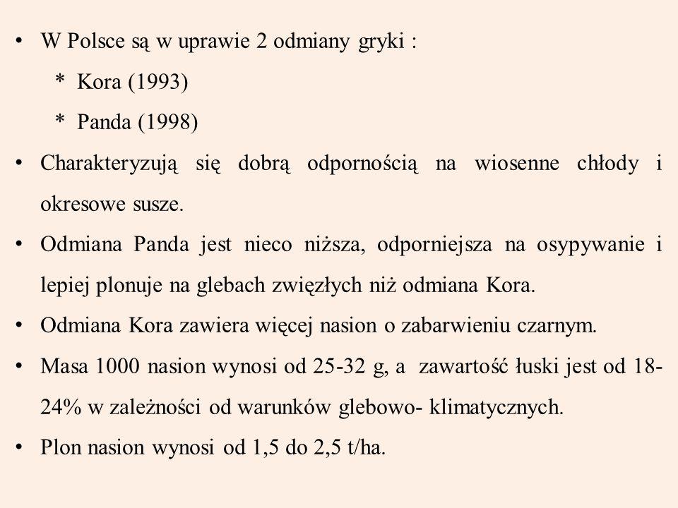 W Polsce są w uprawie 2 odmiany gryki : * Kora (1993) * Panda (1998) Charakteryzują się dobrą odpornością na wiosenne chłody i okresowe susze. Odmiana