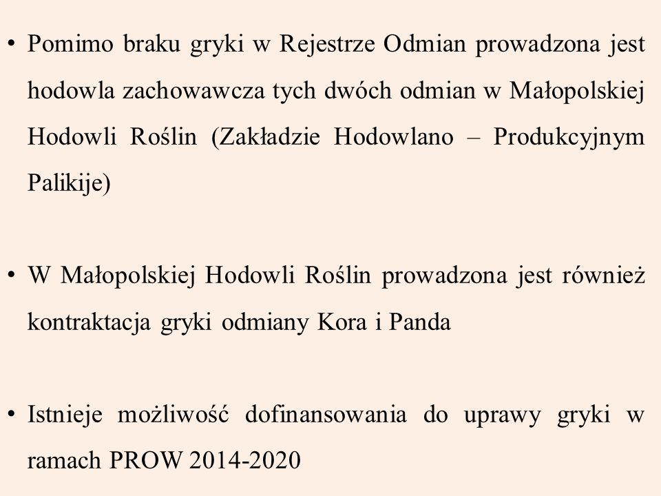 Pomimo braku gryki w Rejestrze Odmian prowadzona jest hodowla zachowawcza tych dwóch odmian w Małopolskiej Hodowli Roślin (Zakładzie Hodowlano – Produ