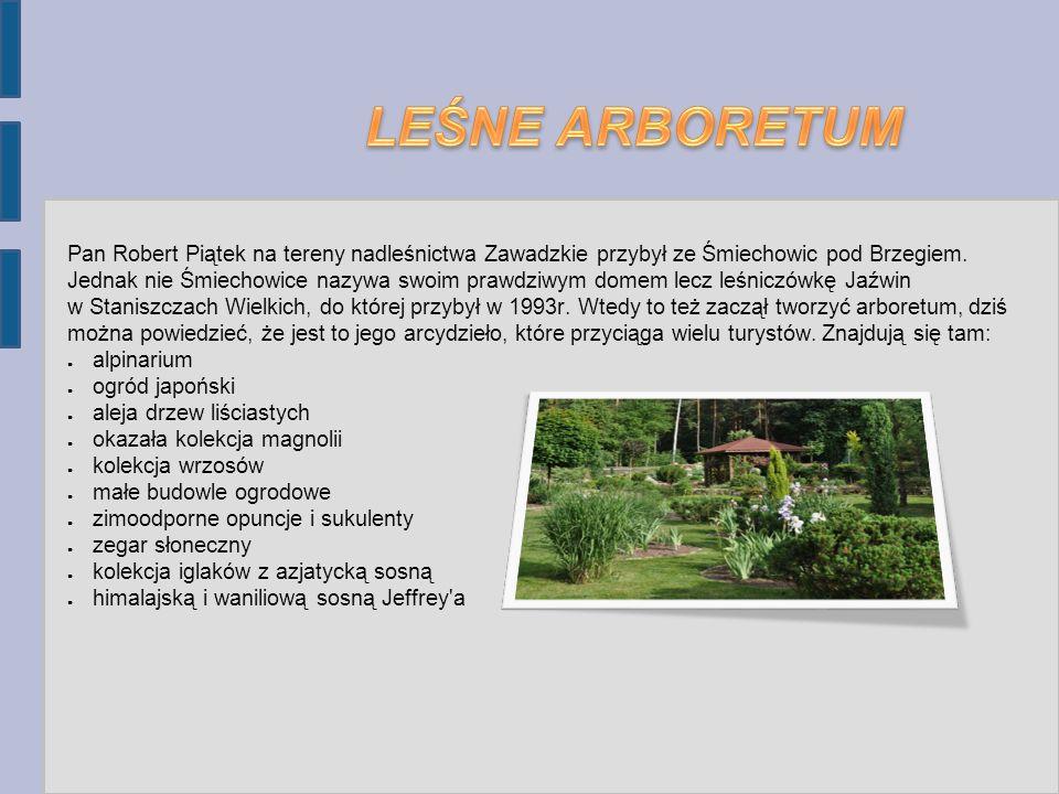 Pan Robert Piątek na tereny nadleśnictwa Zawadzkie przybył ze Śmiechowic pod Brzegiem.