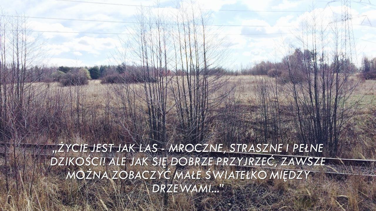 """""""ŻYCIE JEST JAK LAS - MROCZNE, STRASZNE I PEŁNE DZIKOŚCI."""