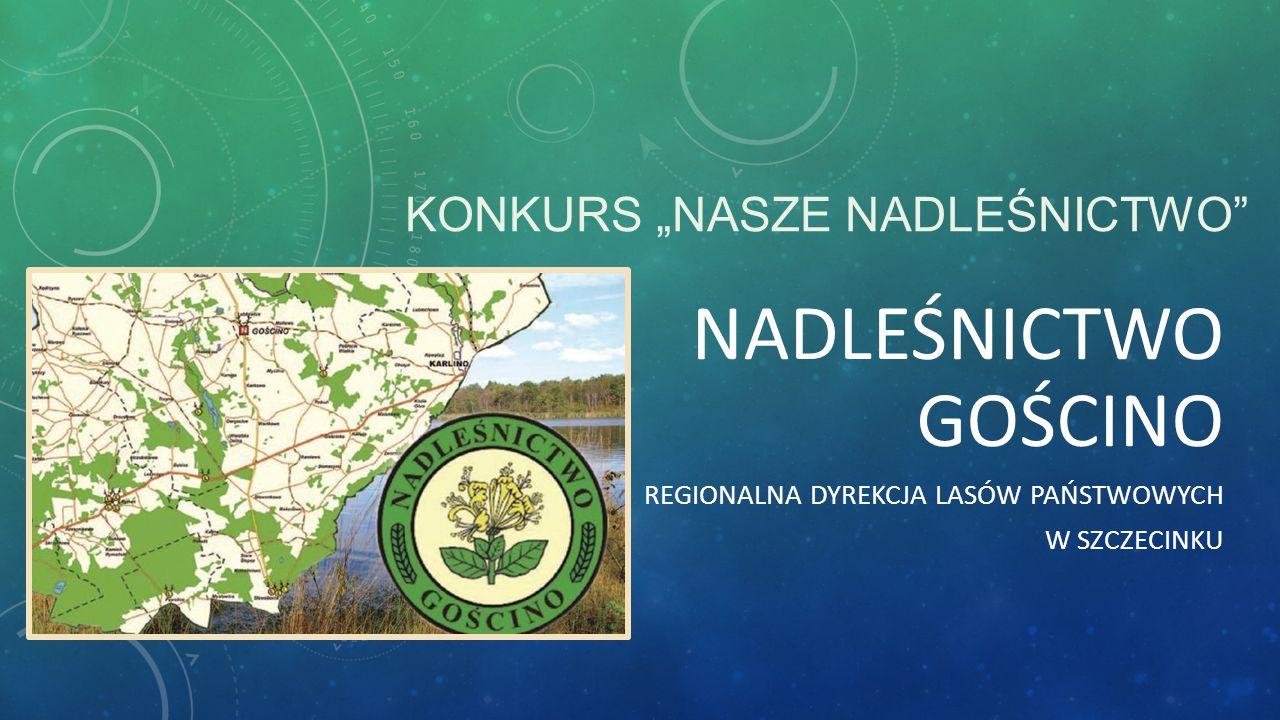 NADLEŚNICTWO W GOŚCINIE - HISTORIA Nadleśnictwo Gościno (do roku 1952 noszące nazwę Gostyń Pomorski), jako jednostka administracyjna Lasów Państwowych powstało w 1946 roku.