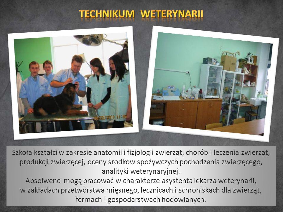 Szkoła kształci w zakresie anatomii i fizjologii zwierząt, chorób i leczenia zwierząt, produkcji zwierzęcej, oceny środków spożywczych pochodzenia zwierzęcego, analityki weterynaryjnej.